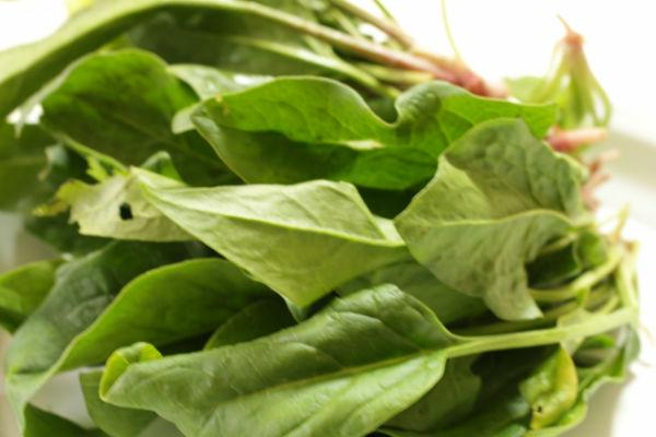 効率的に野菜からルテインを摂取する方法